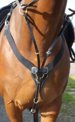John Whitaker V-Check Breastplate